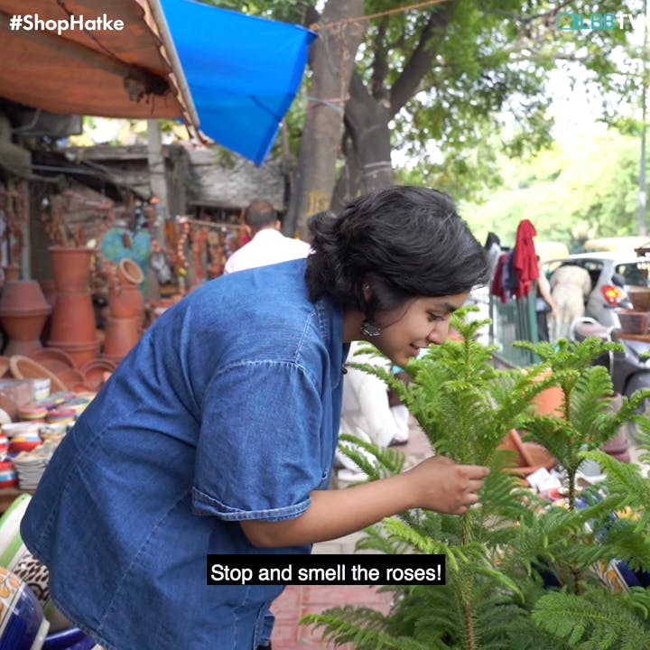 Selling,Local food,Plant,Marketplace,Market,Vegetable,Flower,Leaf vegetable,Farmer