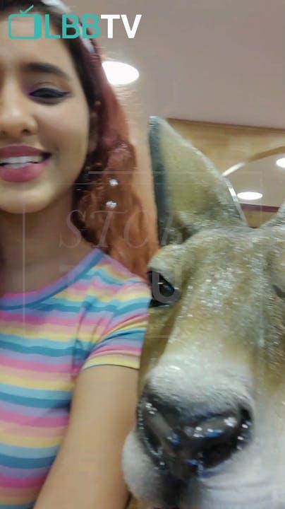 Head,Nose,Canidae,Snout,Eye,Selfie,Organ,Jaw,Lip,Fawn