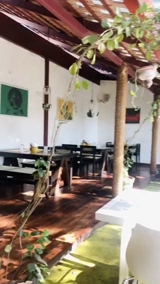 Room,Property,Interior design,Building,House,Loft,Restaurant,Furniture,Table,Plant