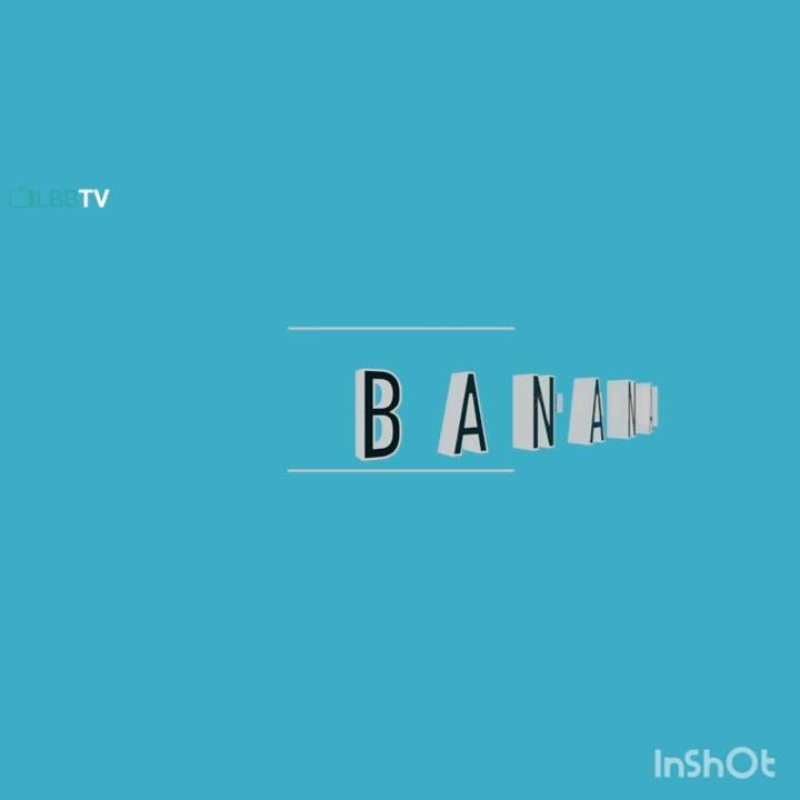 Text,Blue,Aqua,Font,Turquoise,Azure,Teal,Logo,Line,Turquoise