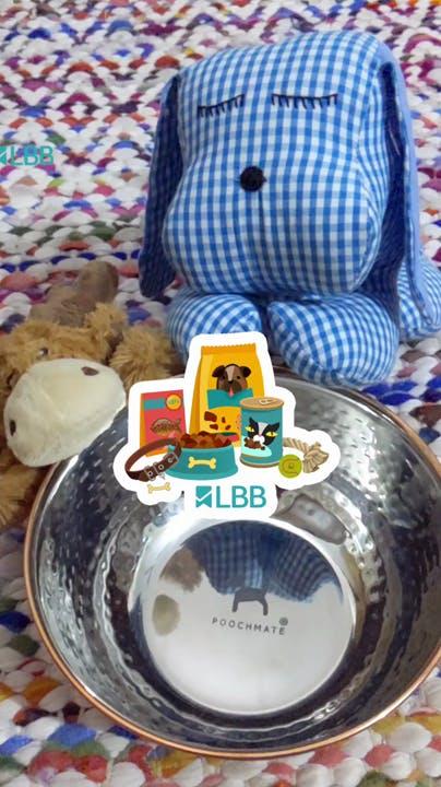 Teddy bear,Toy,Tableware