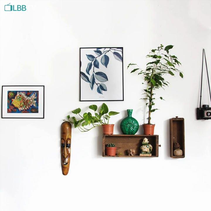 Plant,Flowerpot,Houseplant,Branch,Interior design,Twig,Font,Art,Rectangle,Terrestrial plant